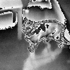 Flir (I7) Some Analysis | www nuage ch